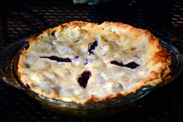 blackberry pie recipe 21