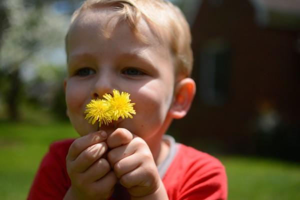 davidflowers 2