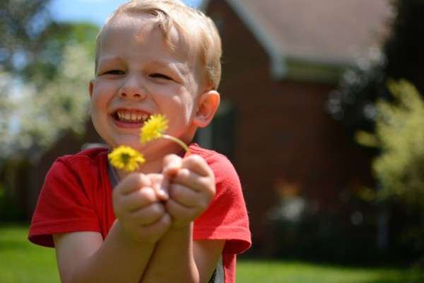davidflowers 3