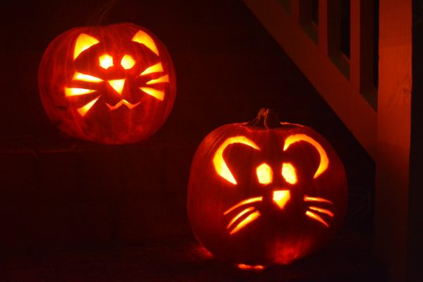 carved cat and mouse pumpkin