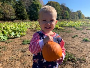 The pumpkin patch field trip